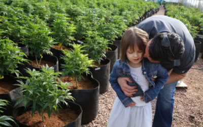 Charlotte, CBD oil for epilepsy